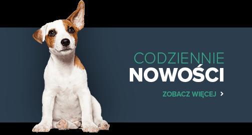 Internetowy sklep zoologiczny Zakupy Online Karusek