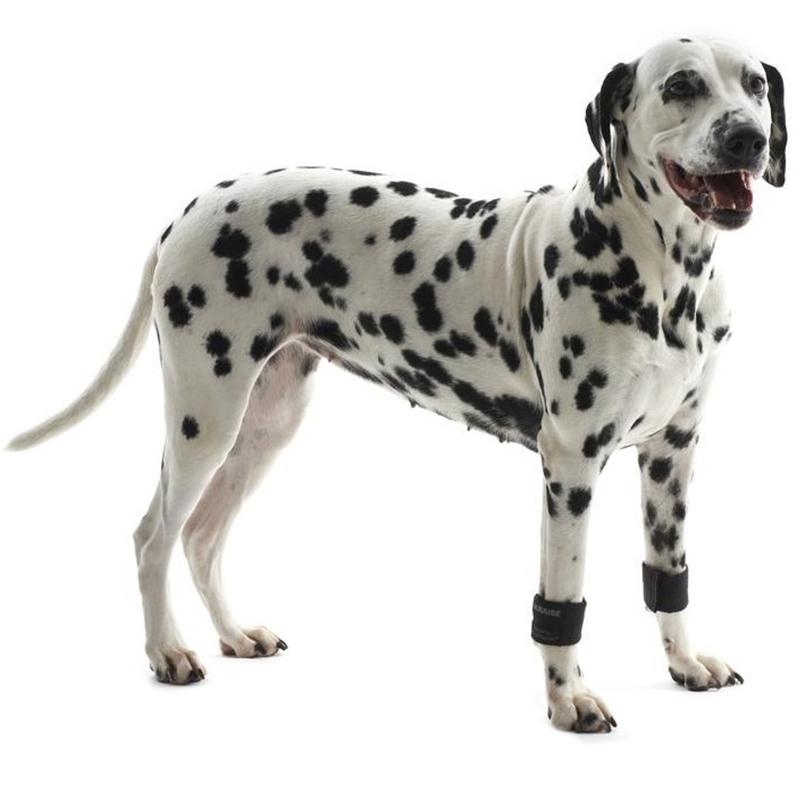 Kruuse Rehab Weight Cuffs - zestaw dwóch obrączek do rehabilitacji i wzmacniania mięśni psa