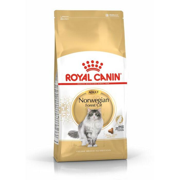 ROYAL CANIN Norwegian Forest Cat - karma dla kotów rasy Norweski Leśny