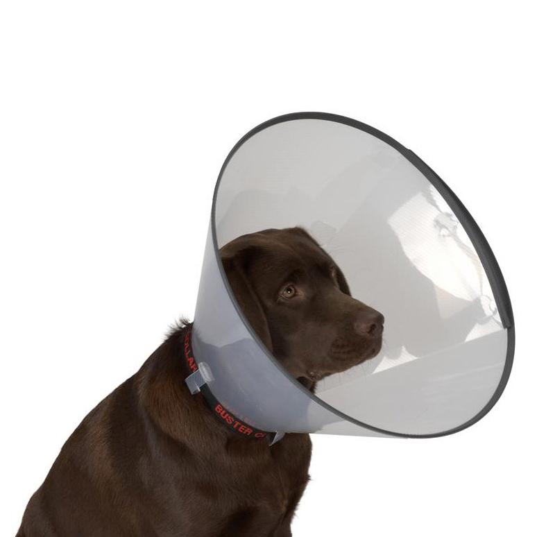 BUSTER kołnierz weterynaryjny dla psa