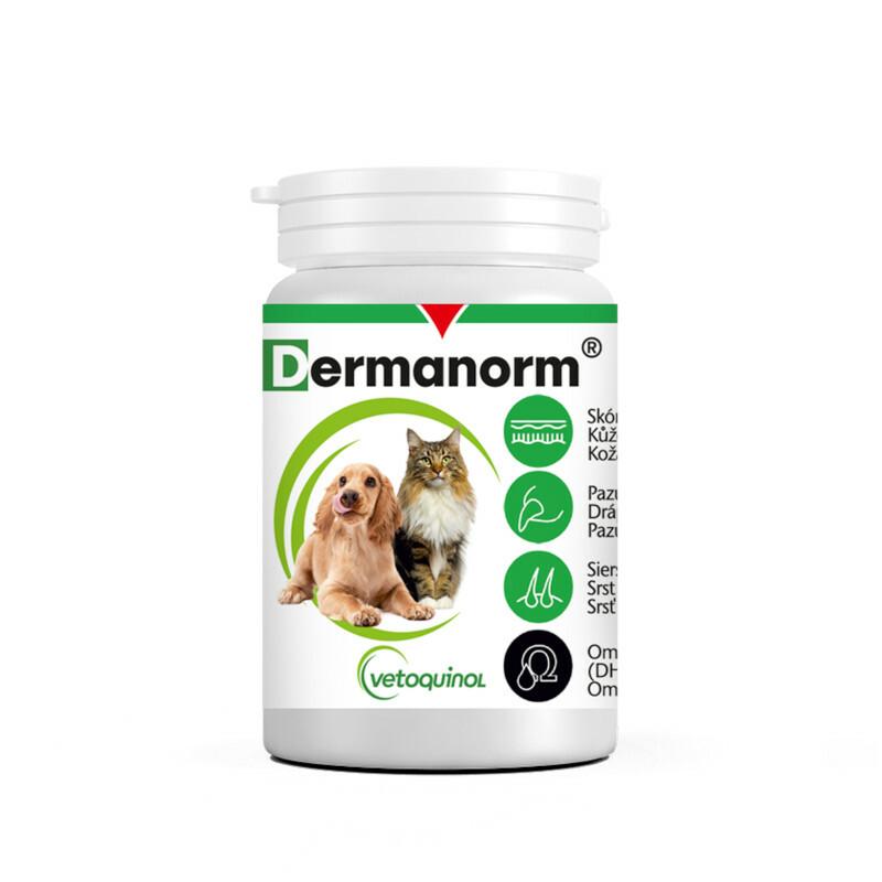 VETOQUINOL DERMANORM - preparat witaminowy dla psów na poprawę kondycji skóry i sierści, 250 kapsułek
