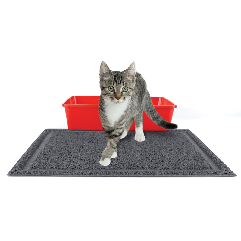 best way to clean pet stains off carpet