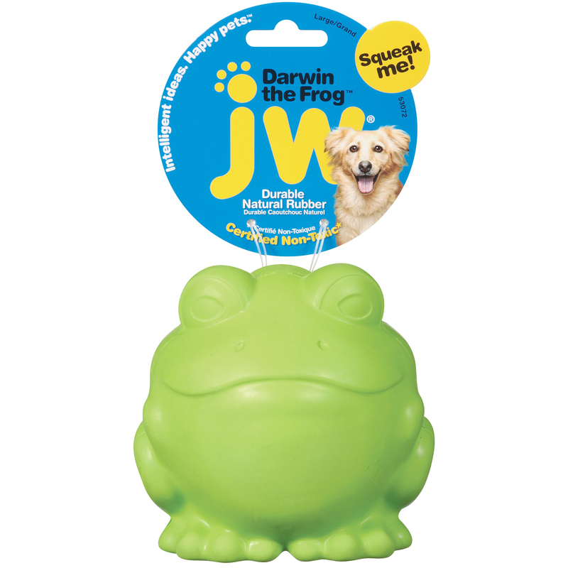 JW PET Darwin the Frog - piszcząca zabawka dla psa