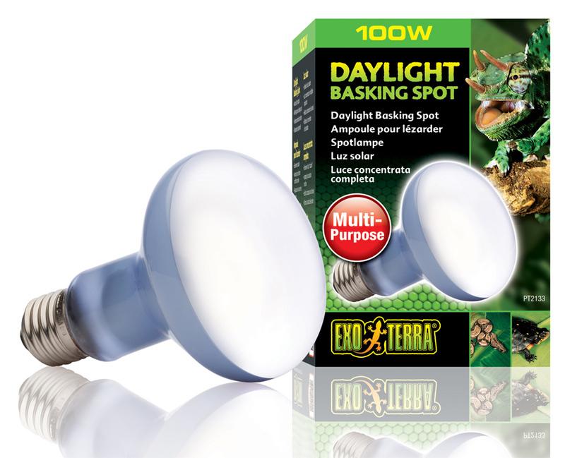 EXO TERRA Daylight Basking Spot - Dzienna żarówka z neodymem, o szerokim spektrum działania