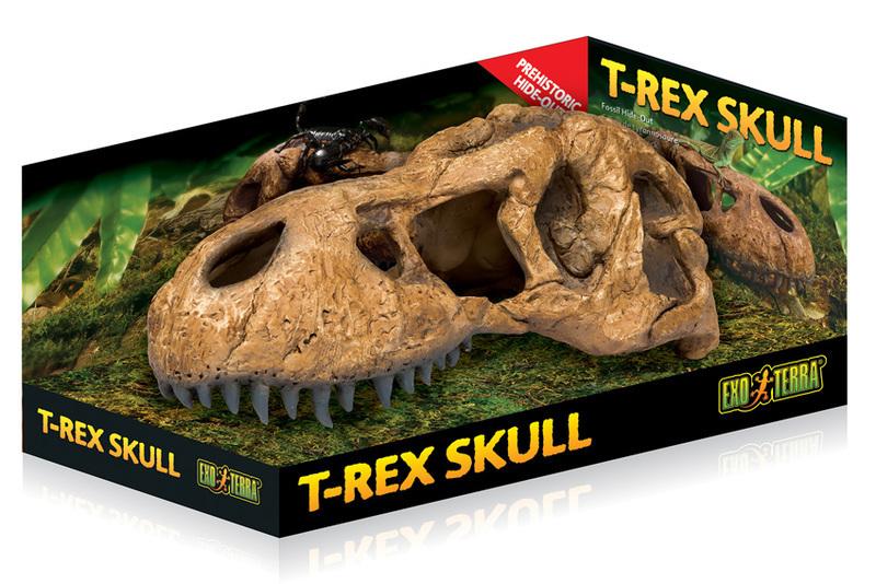 EXO TERRA T-Rex Skull - czaszka dinozaura T-rex do terrarium