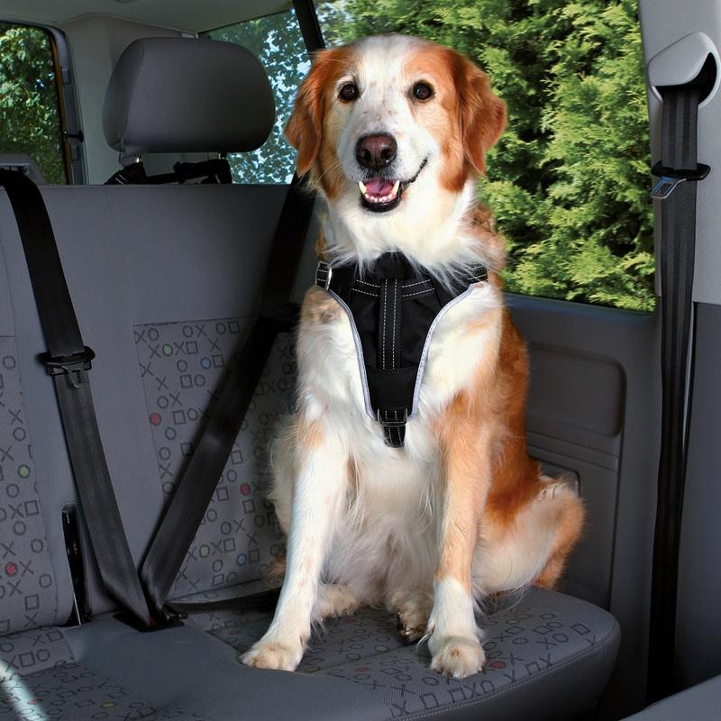 TRIXIE Szelki samochodowe Dog Protect - pasy bezpieczeństwa dla psów