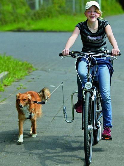 Karlie SPRINGER / Bike Doggy Runner- uchwyt do roweru- bezpieczny spacer z psem na rowerze