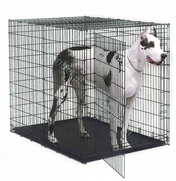 MIDWEST Solutions - klatka dla psa