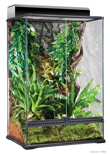EXO TERRA Terrarium MEDIUM - szklane terrarium