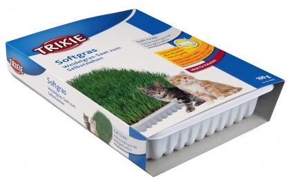 TRIXIE Trawa dla młodych kotów do uprawy w pojemniku 100g