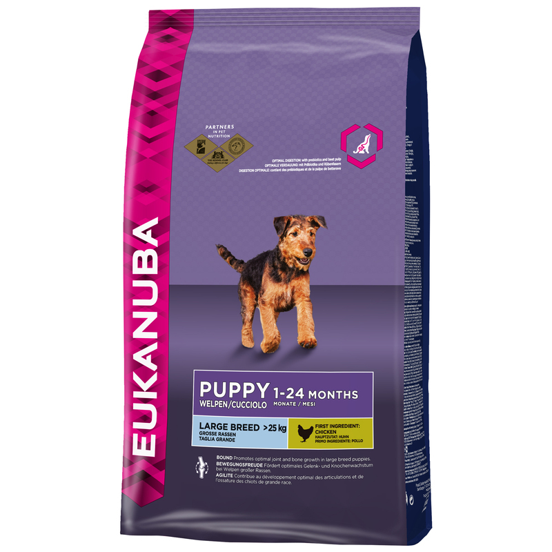 Eukanuba Puppy & Junior Large Breed (Duże Rasy) - 15kg - plecak gratis!!!