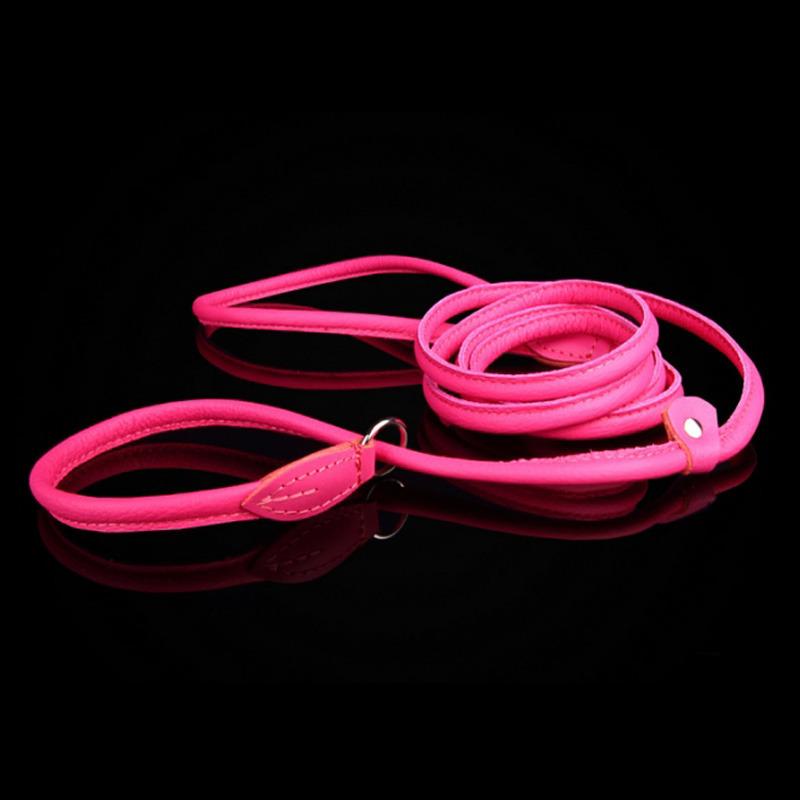 ZOOLESZCZ - ringówka dla psa, choker, skórzana, szerokość 6 mm, kolor rożowy