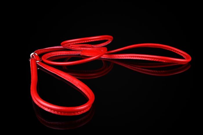ZOOLESZCZ - ringówka dla psa, choker, skórzana, szerokość 6 mm, kolor czerwony