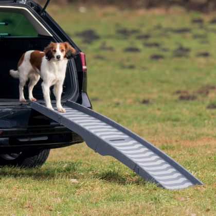 TRIXIE Rampa - kładka składana dla psa ważącego do 25 kg, długość 1,5m