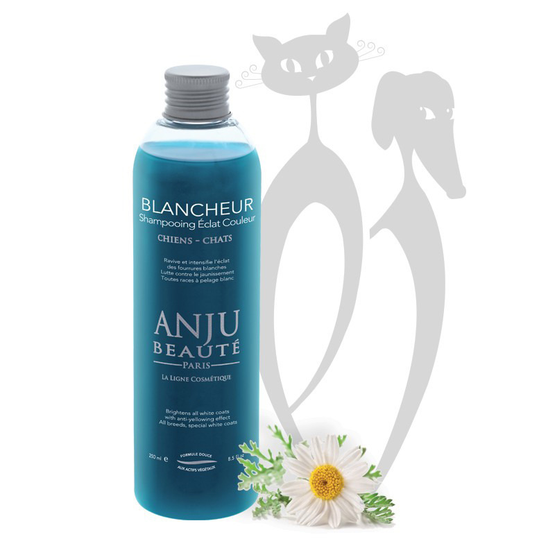 ANJU BEAUTE Blancheur - szampon do białej sierści, dla psów i kotów, 250 ml
