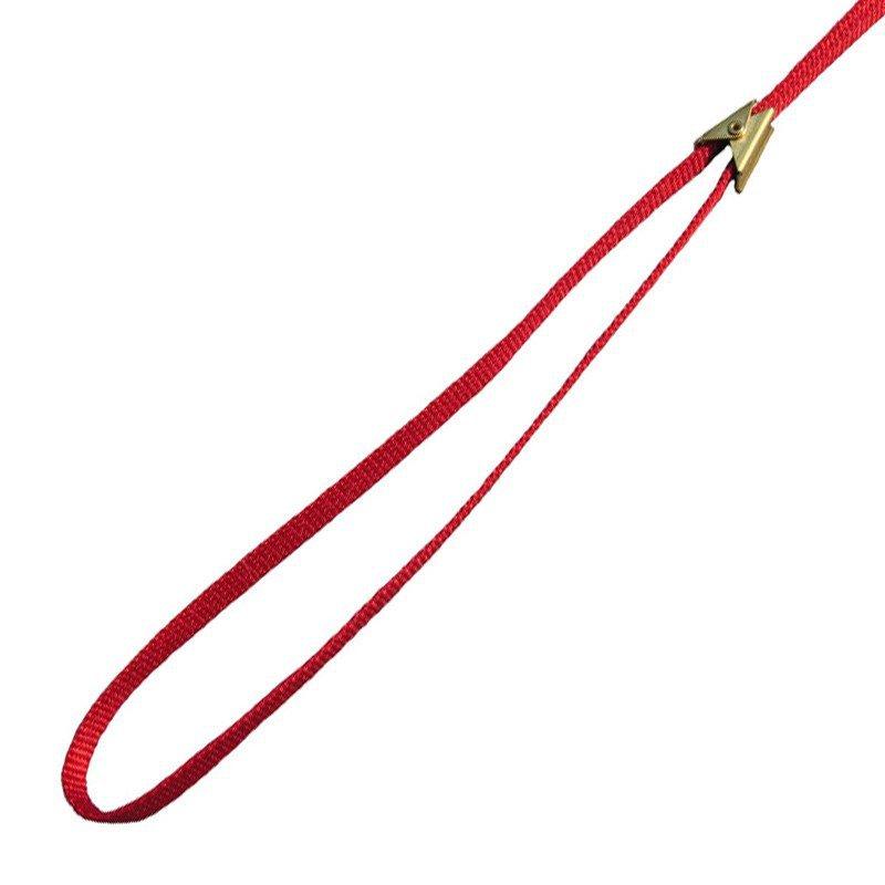 SIMPLICITY - ringówka wystawowa dla psa, płaska, kolor czerwony, 9 mm