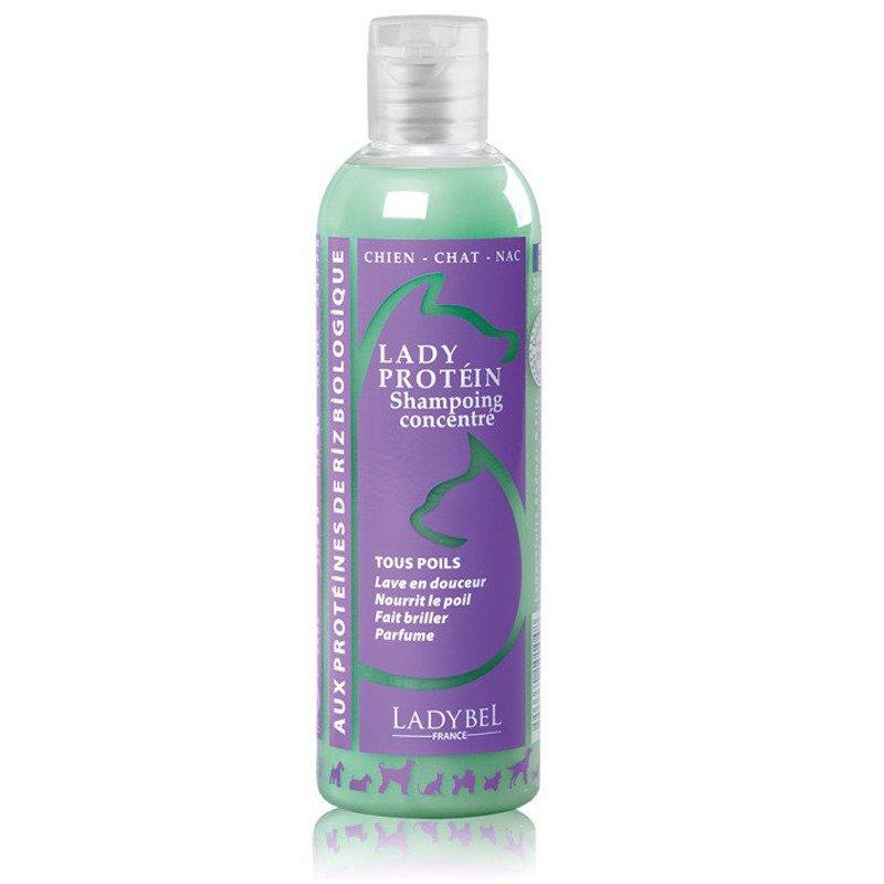 LADYBEL Lady Protein - szampon z proteinami białka, doskonały do półdługiej i długiej szaty, dla psów i kotów