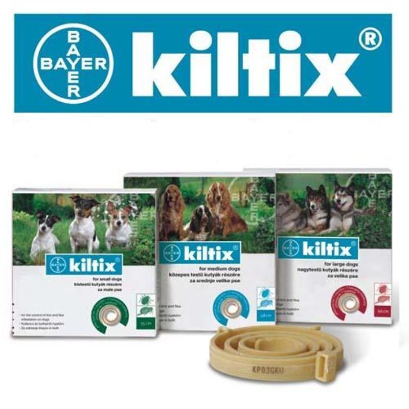 Bayer Kiltix - obroża przeciw pchłom i kleszczom dla psów