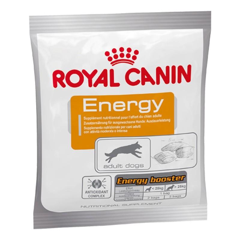 ROYAL CANIN Energy - zdrowy przysmak dla psów aktywnych 50g