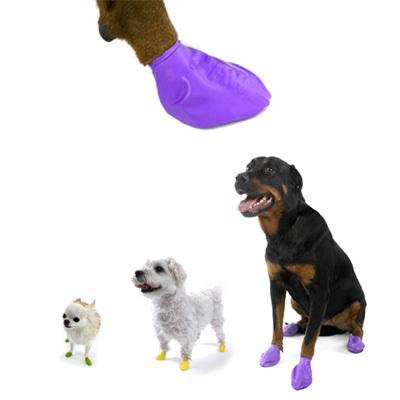 PAWZ obuwie ochronne, gumowe dla psów, 4sztuki Ochrona łap przed solą i mrozem!
