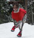 RUFFWEAR Polar Trex -  buty zimowe dla psa, komplet 4szt.