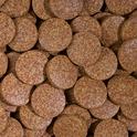 TROPICAL POND TABIN - wieloskładnikowy pokarm w postaci dużych tabletek dla ryb ogrodowych, 600ml