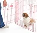 MIDWEST Life Stages Kojec- Zagroda dla psa, kolor różowy, panele 61x61cm