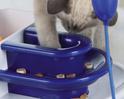 TRIXIE Fantasy Board - gra strategiczna dla kota