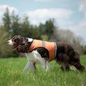 INSECT SHIELD - kamizelka dla psów odstraszająca komary, kleszcze, pchły, muchy i muchówki