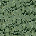 SERA Spirulina Tabs - Samoprzylepne tabletki ze spiruliną, 24 tabletki