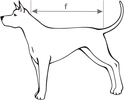 AMI PLAY Sweter Glasgow - ubranko dla psa w niebiesko-białe paski