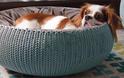 Curver Cozy Bed legowiska dla psa i kota
