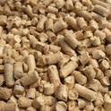 Benek Super PINIO drewniany żwirek dla kota 5l, 10l lub 35L