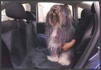 KARUSEK Mata samochodowa- ochrona na tylnie siedzenia