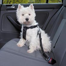 Trixie Szelki - pasy bezpieczeństwa, szelki samochodowe dla psów
