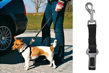 Trixie krótka smycz/pasy bezpieczeństwa dla małych psów