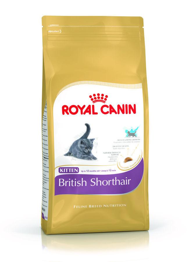 ROYAL CANIN Kitten British Shorthair - karma dla kociąt rasy Brytyjski Krótkowłosy (poniżej 12 miesiąca życia)