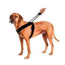 Patento Pet Sport- wygodne szelki dla psa ze zintegrowaną smyczą SZYBKA KONTROLA NAD PSEM! Nowy rozmiar!