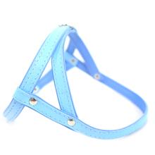 ZOOLESZCZ Smooth - szelki skórzane dla psa (uprząż), błękitne