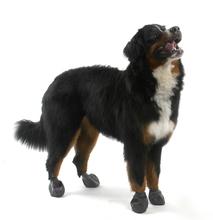 PAWZ obuwie gumowe dla psów 4 sztuki, kolor czarny