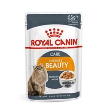 ROYAL CANIN Intense Beauty - karma dla dorosłych kotów na skórę i sierść w galaretce, 85 g