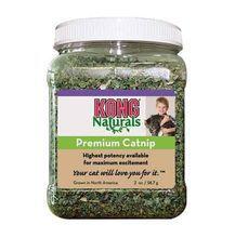 Kong Naturals Premium Catnip - kocimiętka, słoik 30g
