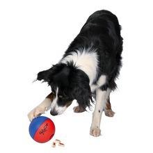 Trixie Dog Activity SNACKY-piłka plastikowa na smakołyki dla psa POMYSŁ NA PREZENT!