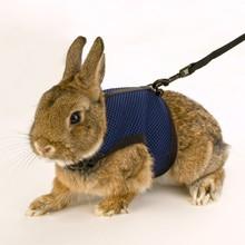 Ferplast Jogging - szelki dla fretki, kawii domowej, królika