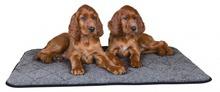 Trixie Warme- mata termoizolacyjna dla psa lub kota