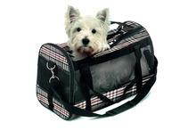 Karlie Divina- torba transportowa dla psa lub kota