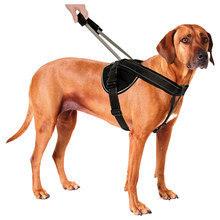 Patento Pet Jockey- wygodne szelki dla psa ze zintegrowaną smyczą Wersja z  tzw. siodełkiem!