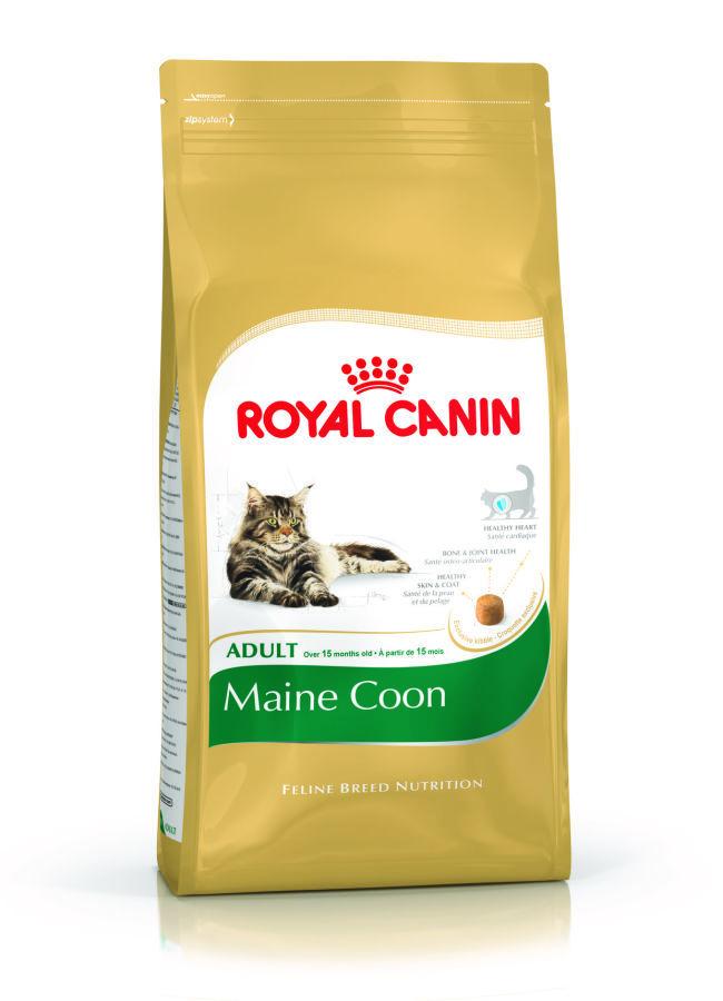 ROYAL CANIN Maine Coon31 - karma dla kotów rasy Main Coon