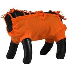 Grande Finale - koszulka pooperacyjna, kolor pomarańczowy Ze specjalnym wycięciem dla samca!