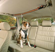 KURGO Auto Zip Line - taśma bezpieczeństwa do samochodu